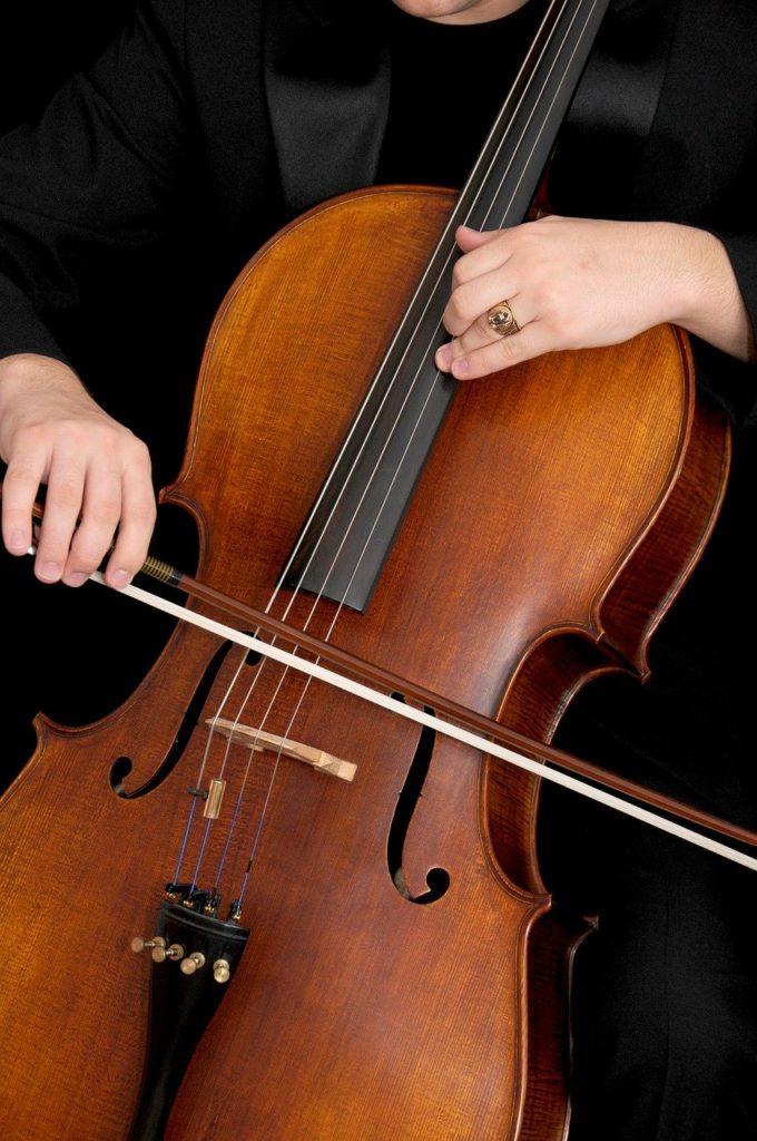 cello, musical instrument, instrument